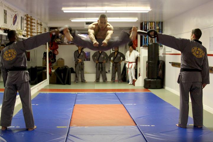 hapkido traditions philosophy technique pdf